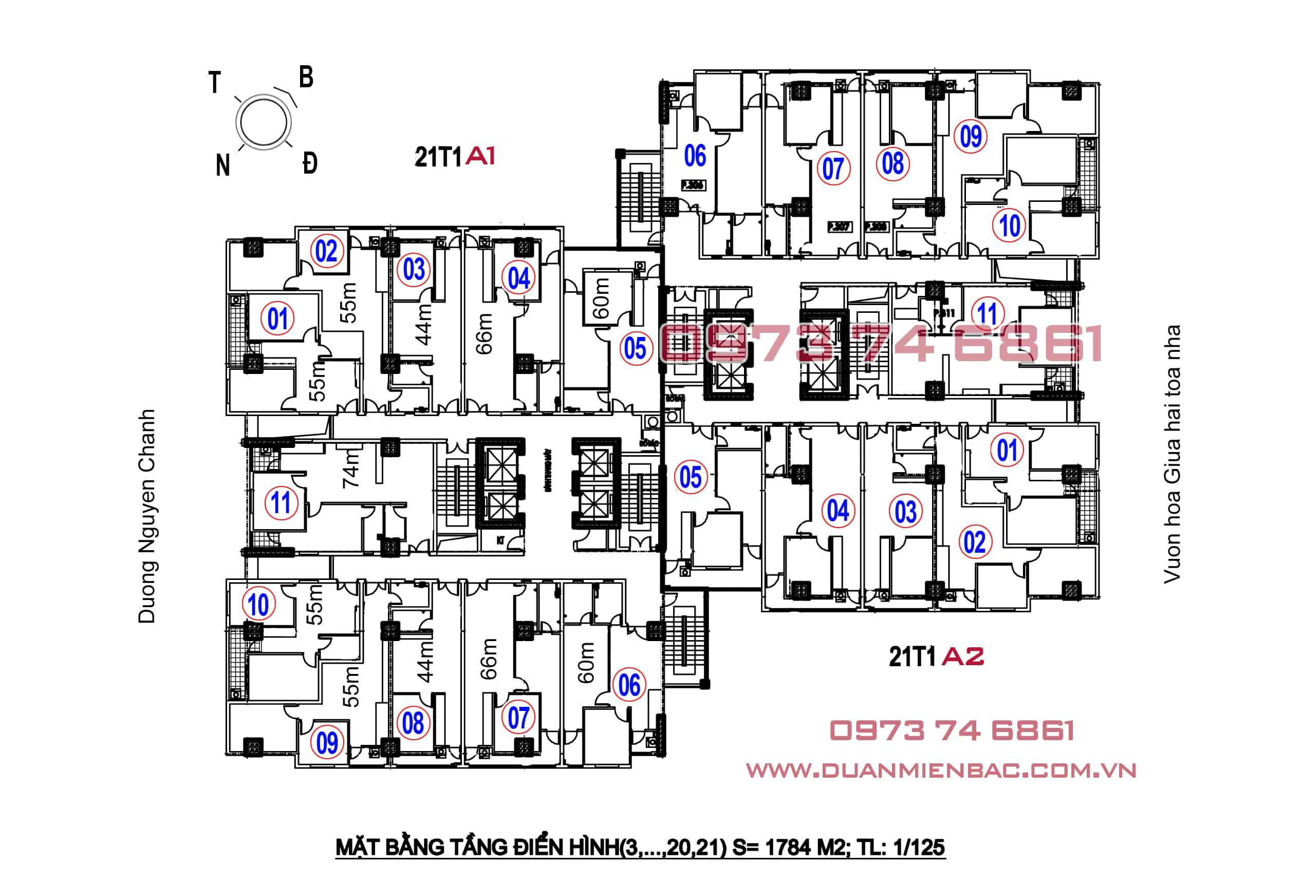 Mặt bằng căn hộ A14 Nam Trung Yên